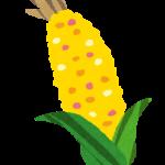 toumorokoshi_corn