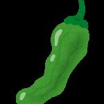 vegetable_shishitou