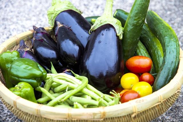 夏野菜のナスやトマトきゅうり