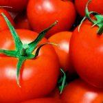 ためしてガッテンのトマトレシピ