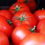 トマトは糖尿病予防に効果的