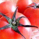 コウケンテツの漁師風トマト鍋レシピ