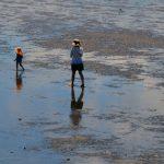 潮干狩りでたくさん見つける方法