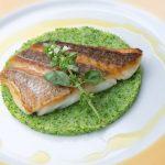 きょうの料理大原千鶴の鯛レシピ