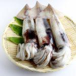 大原千鶴のイカレシピ