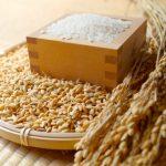 ジョブチューンのお米を最高に美味しく食べられる方法