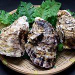 牡蠣レシピ