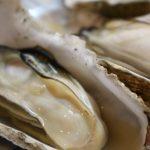 牡蠣と白菜のトロッと煮の作り方