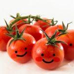 サバのトマト煮込みレシピ