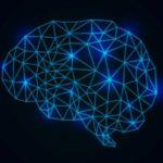 記憶脳を鍛える脳トレの方法
