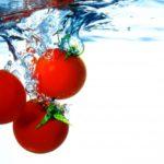 ミニトマトの正しい保存方法
