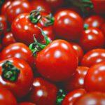 いかトマトのレシピ