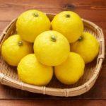 柚子のレシピ