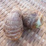 里芋の芋炊きのレシピ