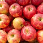 りんごの健康効果