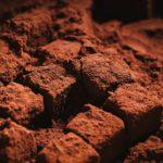 ピエールマルコリーニの生チョコのレシピ