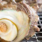 サザエの身を殻から一瞬で出す方法。あさイチで紹介。