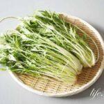 水菜の正しい洗い方。虫や汚れがしっかり取れる!