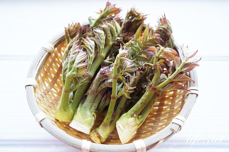 タラの芽の栄養と効能。糖尿病予防・血糖値改善に効果的。