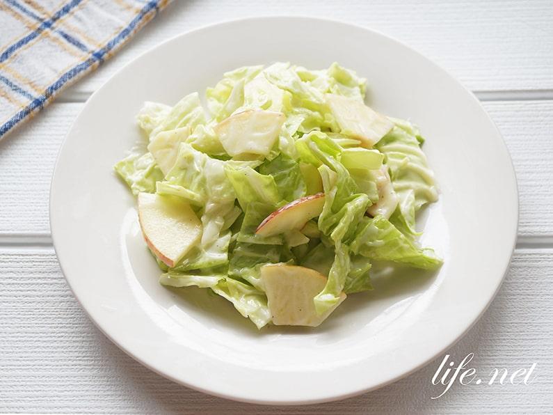 キャベツとりんごのヨーグルトサラダの作り方。平野レミさんのレシピ。
