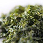 家事ヤロウの海苔だれのレシピ。そうめんに!和田明日香さんが紹介。