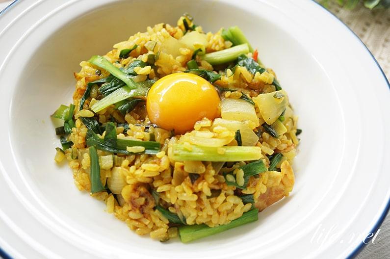 土井善晴さんの自由カレーのレシピ。NHKきょうの料理で紹介。