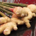 新生姜のべっこう煮のレシピ。あさイチで話題、ご飯のお供に。