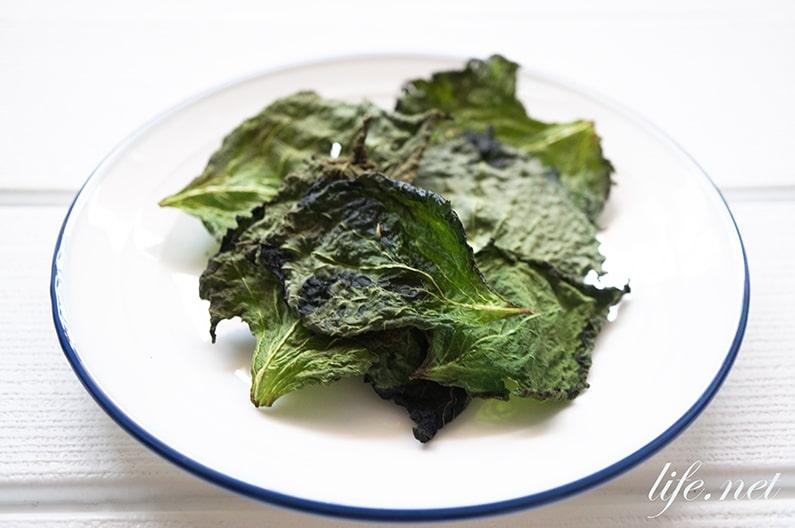 しそ茶のレシピ。ヒルナンデスで紹介の大葉(青紫蘇)のお茶。