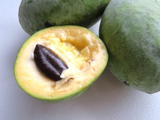 ポポーが美肌に効果的。驚きの栄養価が名医の太鼓判でも話題の果物。
