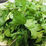 男子ごはんの香菜とシラスのエスニックサラダのレシピ。