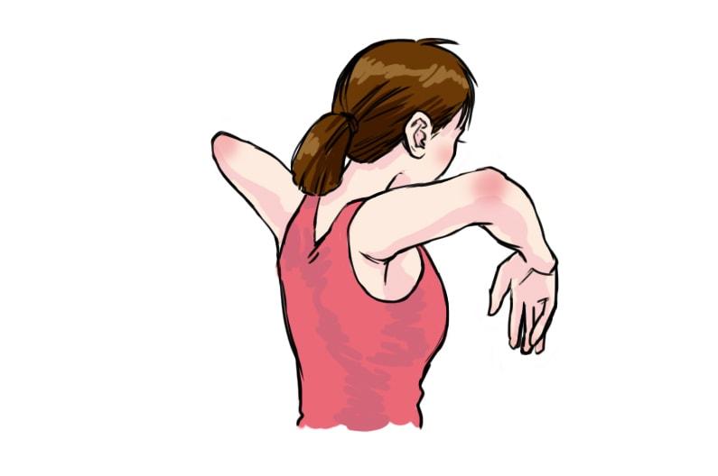 ファシアゆるゆる体操のやり方。美と若さの新常識のストレッチ。