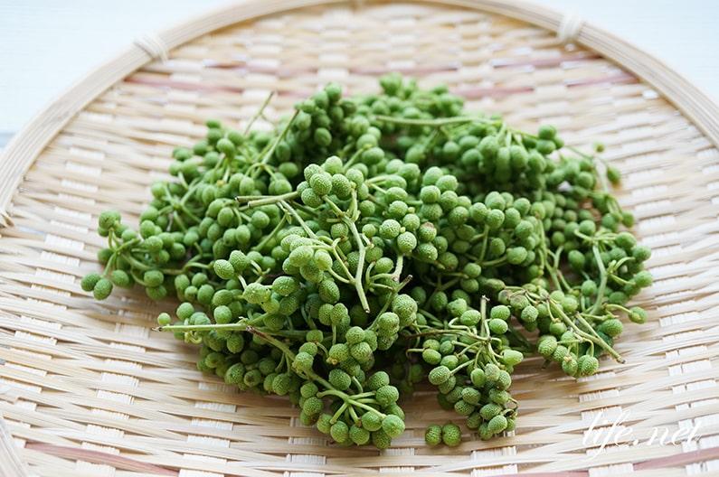 実山椒の下処理・下ごしらえの仕方。冷凍で1年間保存可能に。