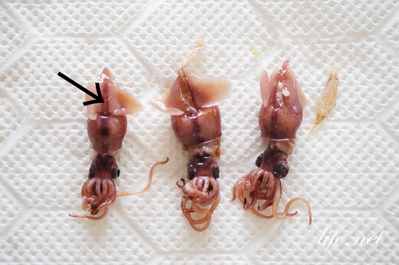 ホタルイカの下処理の仕方。手で簡単!目・口・軟骨の外し方。