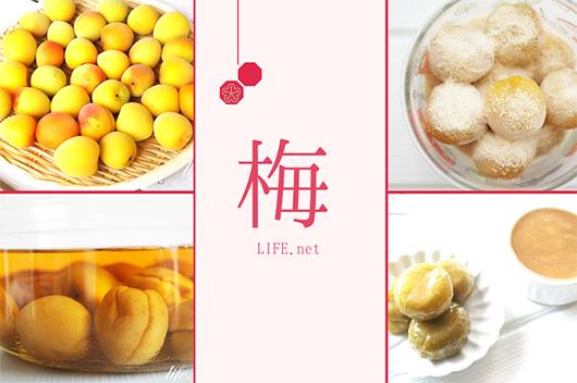梅のレシピ7品まとめ。完熟梅から青い梅まで使える料理を紹介。