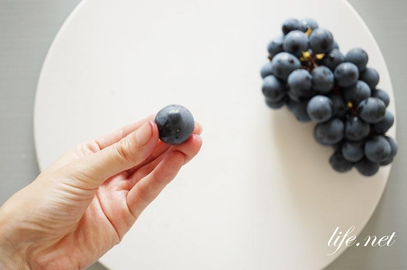 ガッテン流のブドウの皮のむき方。逆からむくだけで簡単&絶品に。